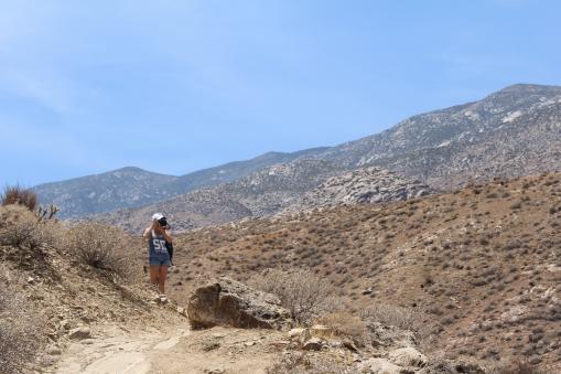 Palm Springs, California, USA
